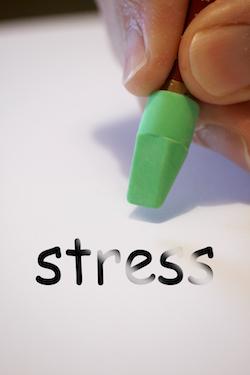 Stress ein Dickmacher